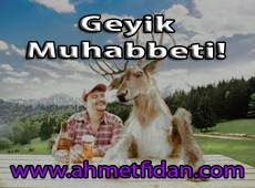 geyik-muhabbeti